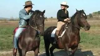 getlinkyoutube.com-Varu Sandel & Suzana - Calu'