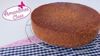 getlinkyoutube.com-Wunderkuchen | einfaches und wandelbares Grundrezept für Kuchen, Tortenböden und Blechkuchen