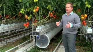 getlinkyoutube.com-Greenhouse commercial Nature Fresh Farms Leamington