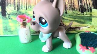 Lps MV Willow