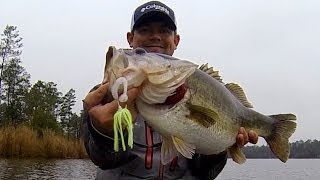 getlinkyoutube.com-10 lb. Bass on a Chatterbait. Spring Bass Fishing.