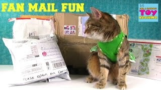 getlinkyoutube.com-Special Surprise Fan Mail Opening Cinco De Mailo | PSToyReviews