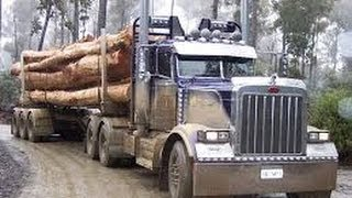 getlinkyoutube.com-BEST of American TRUCKS ( PETERBILT ) ( PURE SOUND ) EPIC