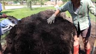getlinkyoutube.com-Elaine Ingham Soil Food Web Compost and Compost Tea