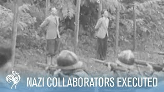 getlinkyoutube.com-French Nazi Collaborators Tried and Executed