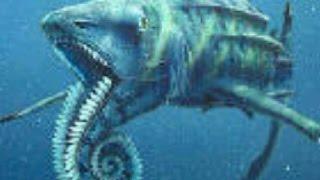 getlinkyoutube.com-【都市伝説】 メガロドンより遥かに大きい怪物ザメ ヘリコプリオン
