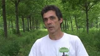 getlinkyoutube.com-Maraîchage bio sous les arbres - Denis Flores (Hérault)