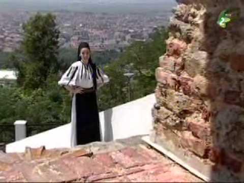 Muzica populara romaneasca din Banatul sirbesc