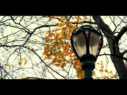 Royalty Free Stock Footage of Antique street lamp with fall trees in Central Park, New York.