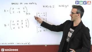 Imagen en miniatura para Rango de una matriz por determinantes 01