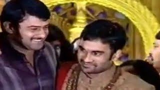 getlinkyoutube.com-P10 - Brahmanandam Son Gautham Wedding Reception