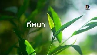 "getlinkyoutube.com-ทุ่งแสงตะวัน | ""ทีพนา"" จ.น่าน  | 03-01-58 | TV3 Official"