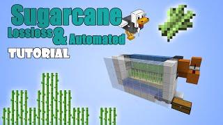 getlinkyoutube.com-Minecraft 1.11 - Sugarcane Farm - Lossless & Automated