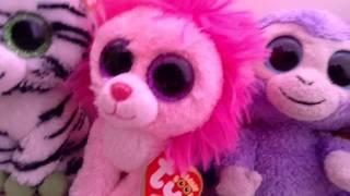 getlinkyoutube.com-My Beanie Boo Collection! 102 Beanie Boos!