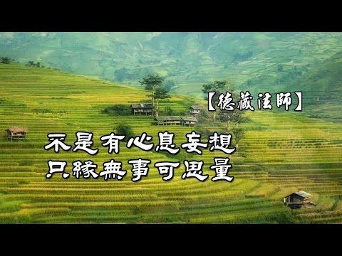 雜阿含36經-03.本來無事可思量【德藏法師】