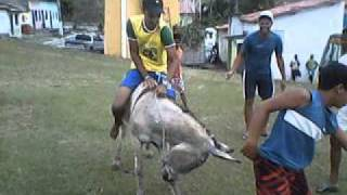 getlinkyoutube.com-Rodeio de Jegue : Serra Preta