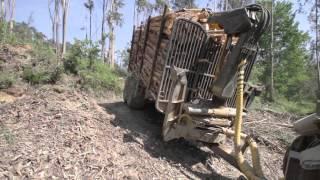 COSTA forestry 4WD trailers and cranes / Reboques e gruas florestais COSTA