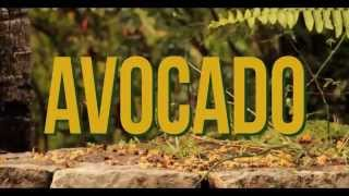 AvocadoVideo