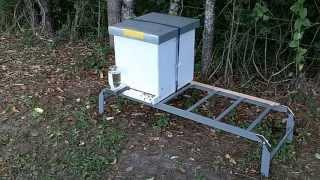 getlinkyoutube.com-Hives! OK, Beehives!