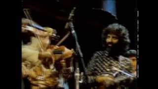 getlinkyoutube.com-Stéphane Grappelli and David Grisman - Sweet Georgia Brown (San Francisco 1982) [official HQ video]