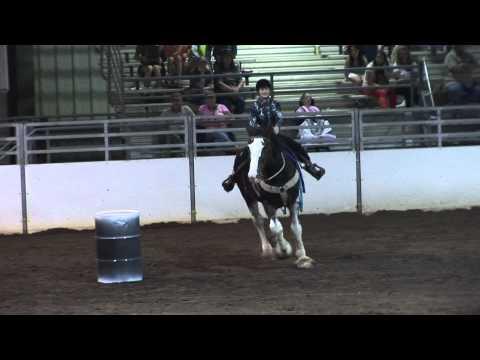 Draft Horse Barrel Racing