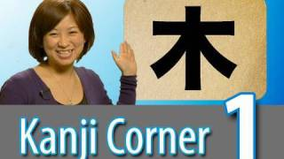 Learn Japanese Kanji   Could Kanji Really Be This Easy??