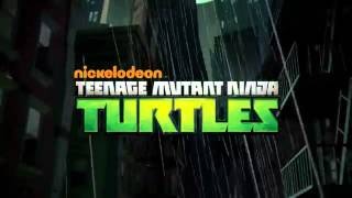TMNT Teenage Mutant Ninja Turtles 2013 TV Commercials
