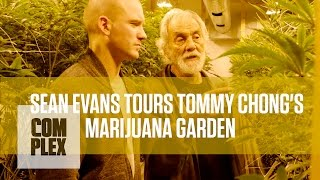 getlinkyoutube.com-Tommy Chong's Medical Marijuana Garden | Complex