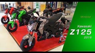 getlinkyoutube.com-Kawasaki Z125 [คาวาซากิ แซด125] | MZ Crazy Cars