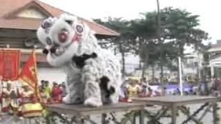 getlinkyoutube.com-Bao Giang Duong Hoi Thi LSR Tp.Can Tho