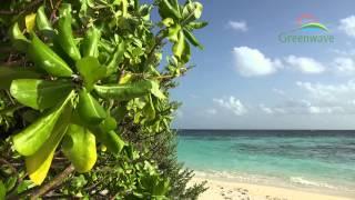 getlinkyoutube.com-Tropical Island - Maldives - 4K