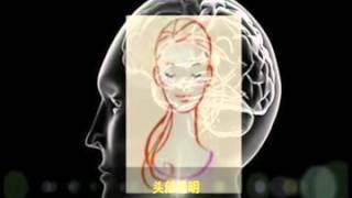 getlinkyoutube.com-脑场指导音乐 - 华文版 (2013最新版)