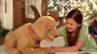 getlinkyoutube.com-Cãozinho - Biscoito - Hasbro - Biscuit My Lovin Pup