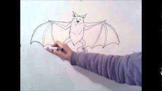 getlinkyoutube.com-como desenhar um morcego passo a passo