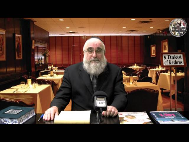 Your Rabbi is a Kosher Guide
