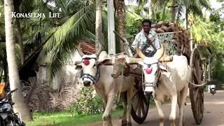Mana konaseema song  Kobbaraku needalo Villages  FULL HD