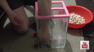 getlinkyoutube.com-Как сделать внешний фильтр для аквариума своими руками