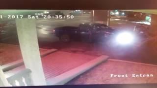 Cámaras captaron el momento en que un hombre fue atropellado por un venado