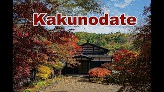 #169 Un jour d'automne à Kakunodate