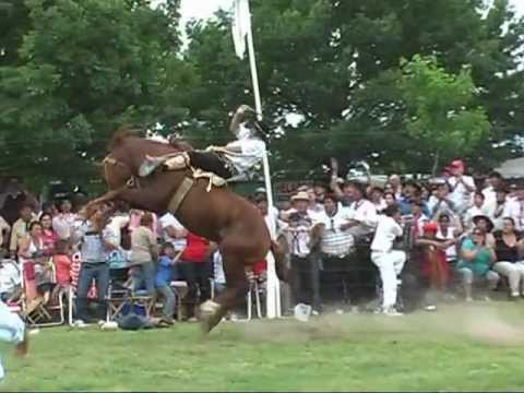 Montas Especiales - Fiesta de la Tradición 2011 - La Carlota (Cba.)