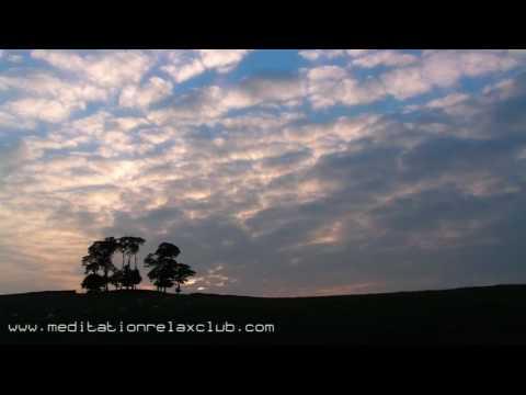 Zen Atmospheres: 8 HOURS Deep Zen Meditation Music and Relaxing Songs Backgrounds