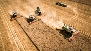 getlinkyoutube.com-Agro-Farm Nauen - Ernte 2015 - Claas Lexion - Osters & Voß