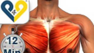 getlinkyoutube.com-Chest Workout Home Version