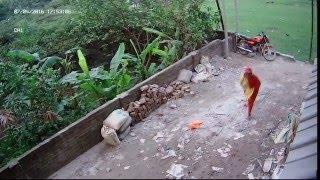 getlinkyoutube.com-সিসি ক্যামেরায় ধরা পড়ল বাসার  সামনে থাকা মোটরসাইকেলের আয়না কিভাবে চুরি হল
