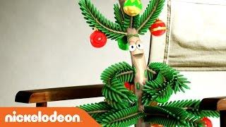 getlinkyoutube.com-Albert the Christmas Tree EXCLUSIVE Behind the Scenes Interview | Nick