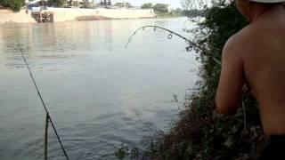getlinkyoutube.com-ตกปลากับ โจ้ เจ้าพระยา ตอน ตกปลาตะโกกหน้าโรงงาน
