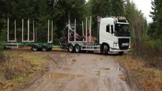 Volvo Timber Trucks in Work!
