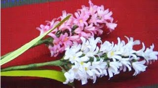 getlinkyoutube.com-Paper Flowers hyacinth (Flower # 26)