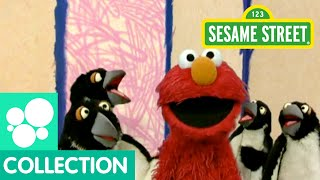 getlinkyoutube.com-Sesame Street: Elmo's World: Penguins