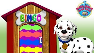 Bingo Dog Song
